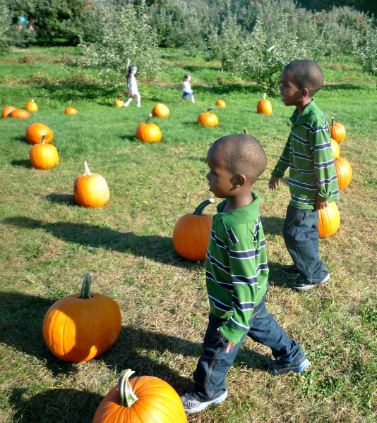50 free fall activities for kids in nyc part i for Nyc kids activities today
