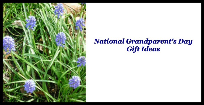 national grandparents day 2013