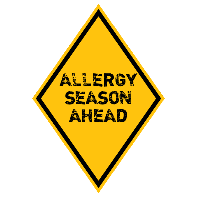 3 Easy Ways to Distinguish Allergies from Colds